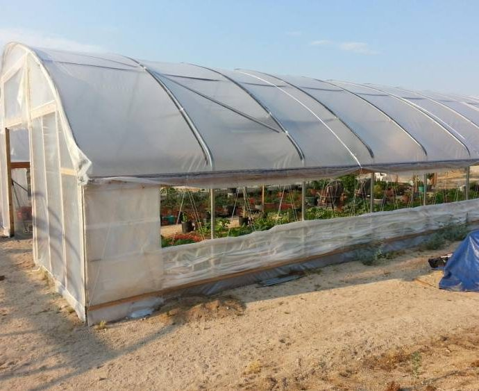 Building the Greenhouses 7